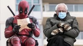 deadpool v bernie.jpg