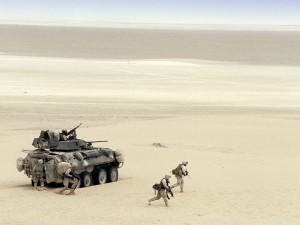 LAND_LAV-25_Desert_Squad_lg