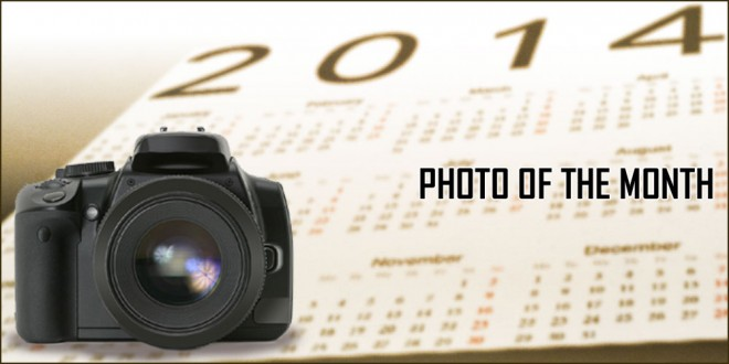 August 2014 Photo of the Month